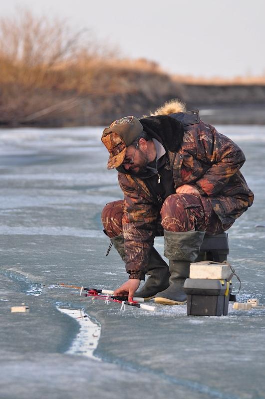 прогноз клева рыбы в губкине белгородской