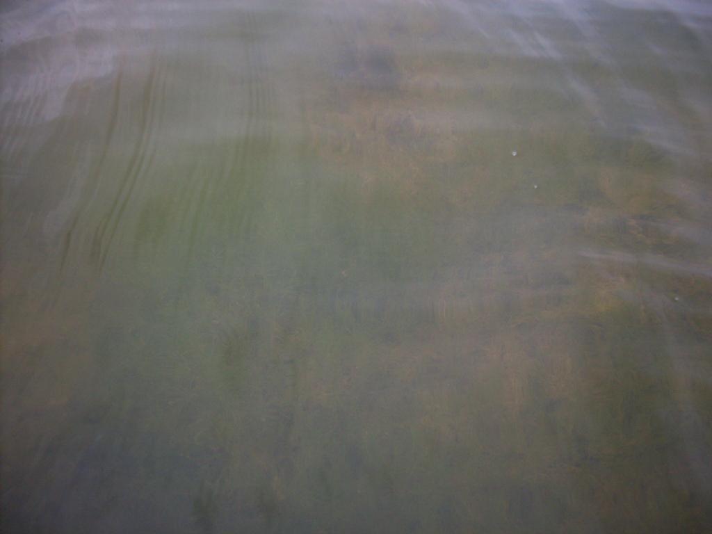 озеро Кандыковское 2