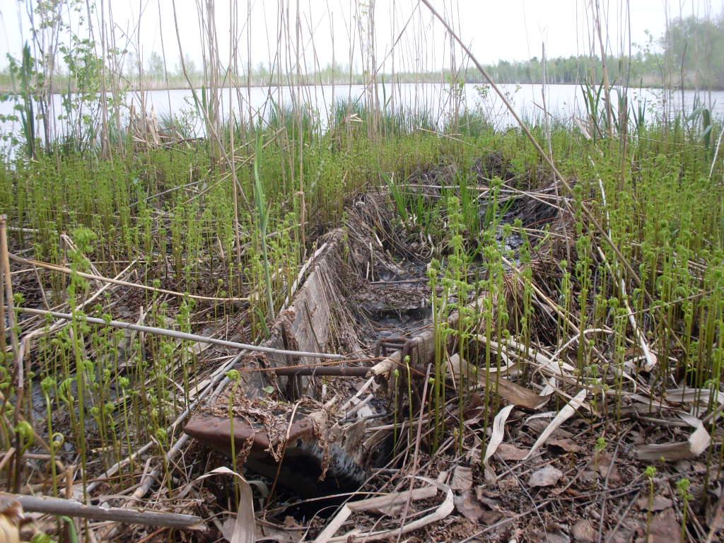 озеро Кандыковское 3