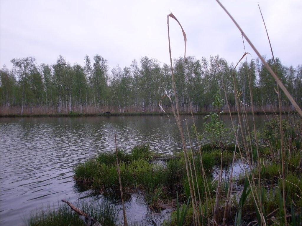 озеро Кандыковское 1