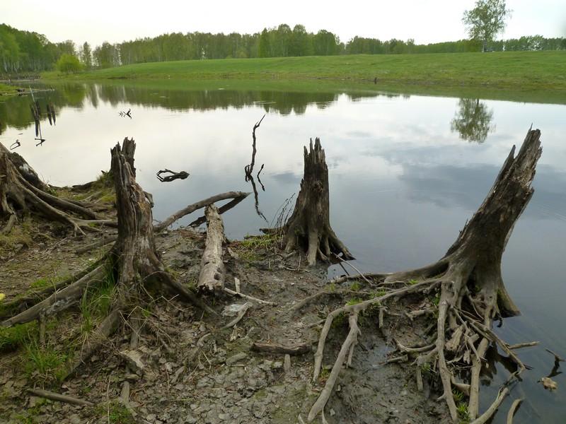 секретный пруд в Мышланке