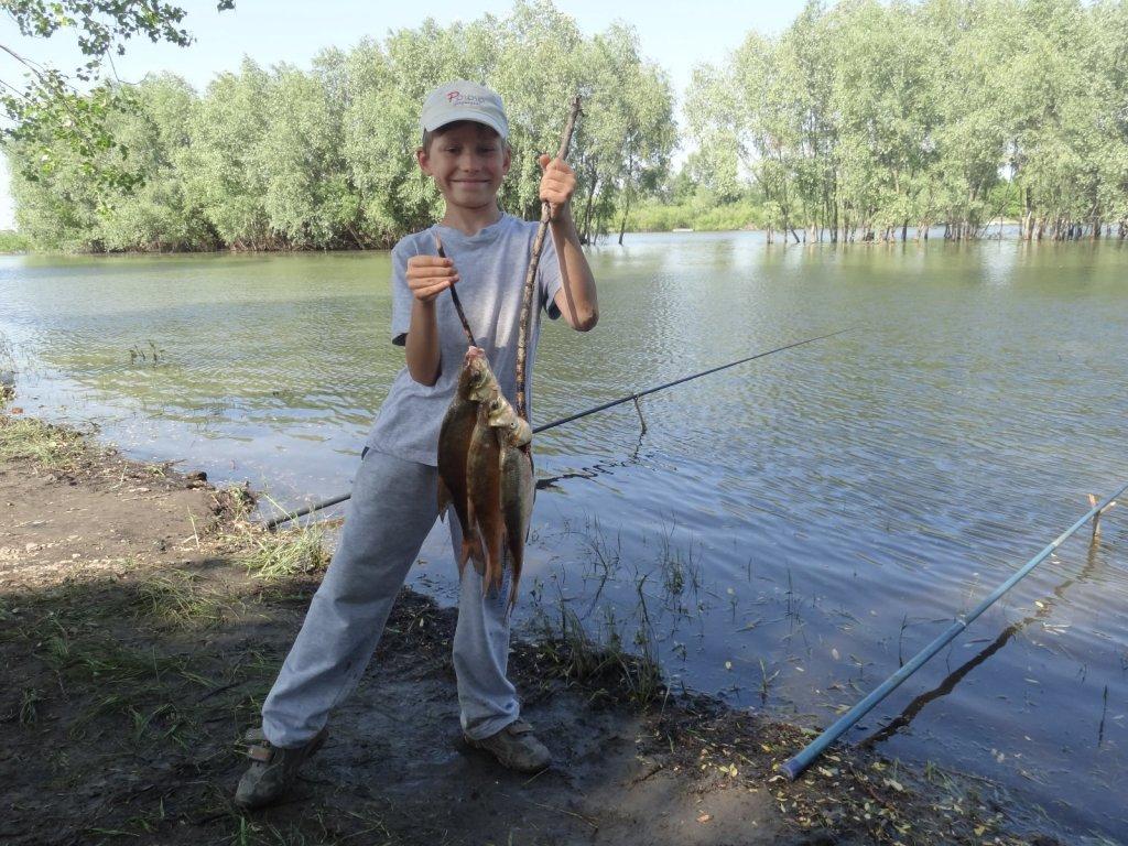 Кудряшовская протока. Сын сам поймал. Общий вес 2 кг.
