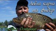 Ловля карпа на фидер с Олегом Осипенко видео : ОДР #2