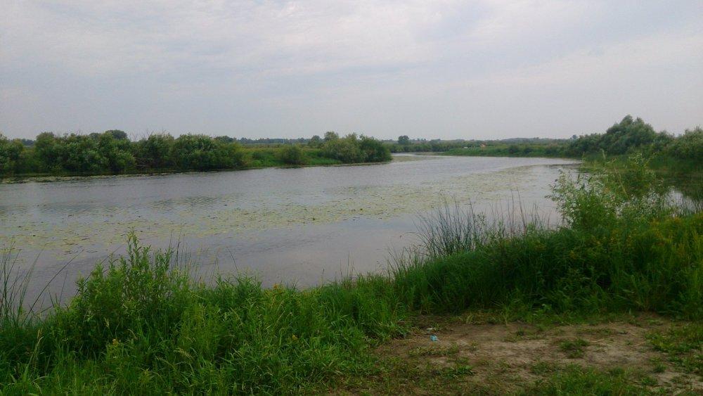 Озеро в колывани