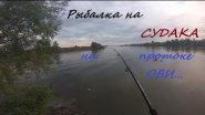 Рыбалка на судака на протоке Оби Луговая. (На конкурс ;-))