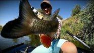 Самые уловистые колеблющиеся блесны. Best fishing spoons