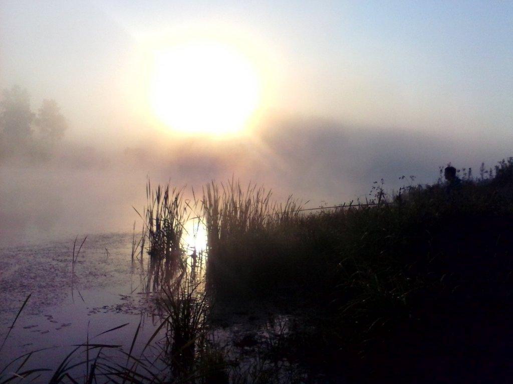 2015_07 Расвет. оз. Сетевое (Кемеровская область, д. Кузедеево)