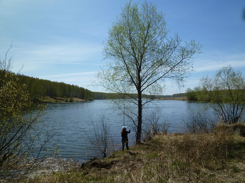 балтинские карасевые пруды