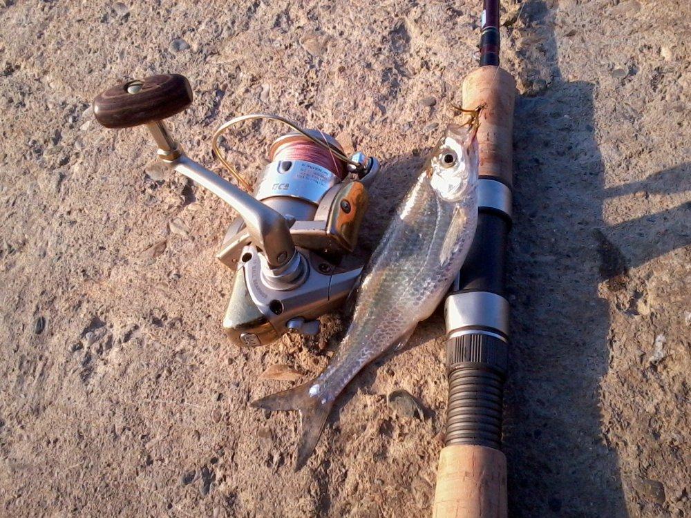 Ловля на мушку с использованием спиннинга и обзор различных техник