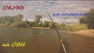Рыбалка сплетней на окуня на Оби. Окунь на мушку. Июль2015. На конкурс.