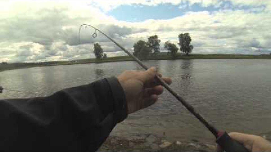 Голавль на речке на Sv-Fishing