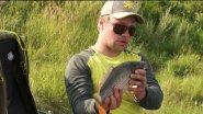 Ловля карпа на фидер летом