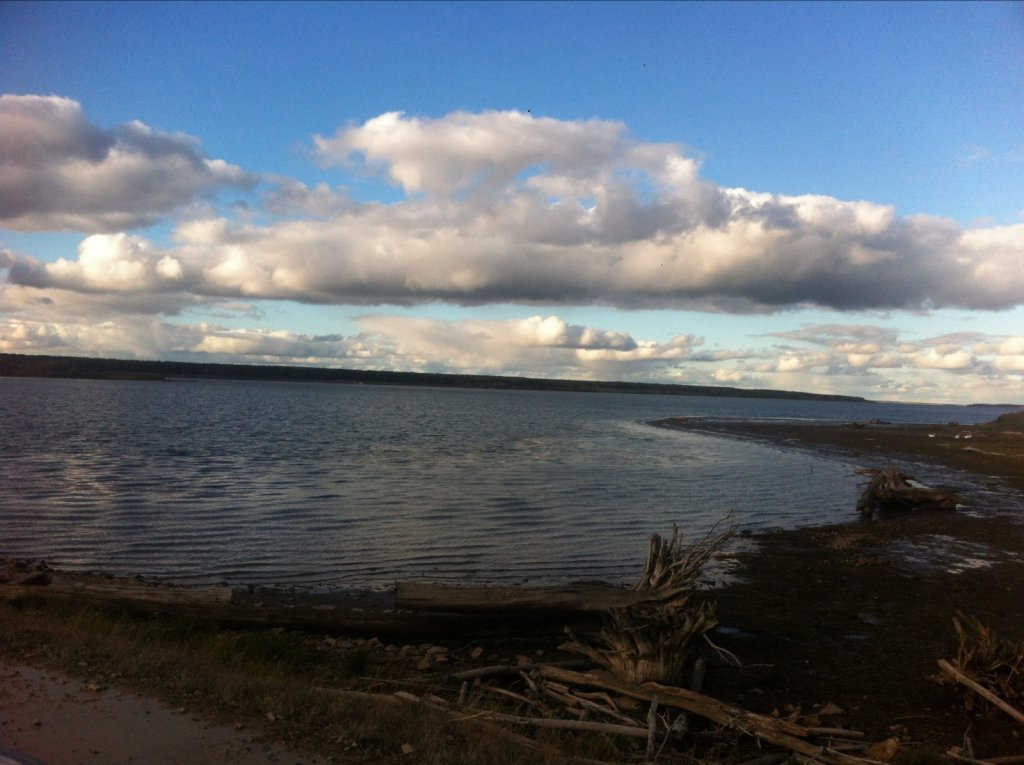 Любимый берег*