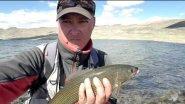 Монголия / Рыбалка на хариуса / Экспедиция в Западную Монголию.
