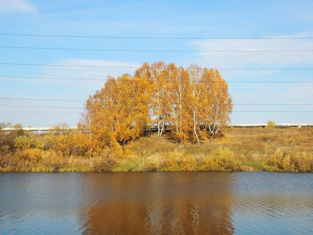 Осень на Спартаке.