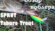 Обзор воблера SPRUT Taburo Trout