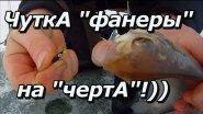 ПашАсУралмашА:-