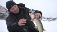 Ловля рыбы отвесным блеснением