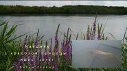 Моя карповая рыбалка. Июнь 2015г. №1.
