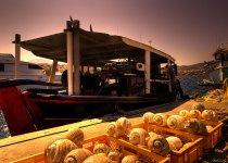 """""""Зачетный улов на Средиземном море"""", о.Крит, август 2014 г. Из серии """"Мои Фото-трофеи разных лет""""."""
