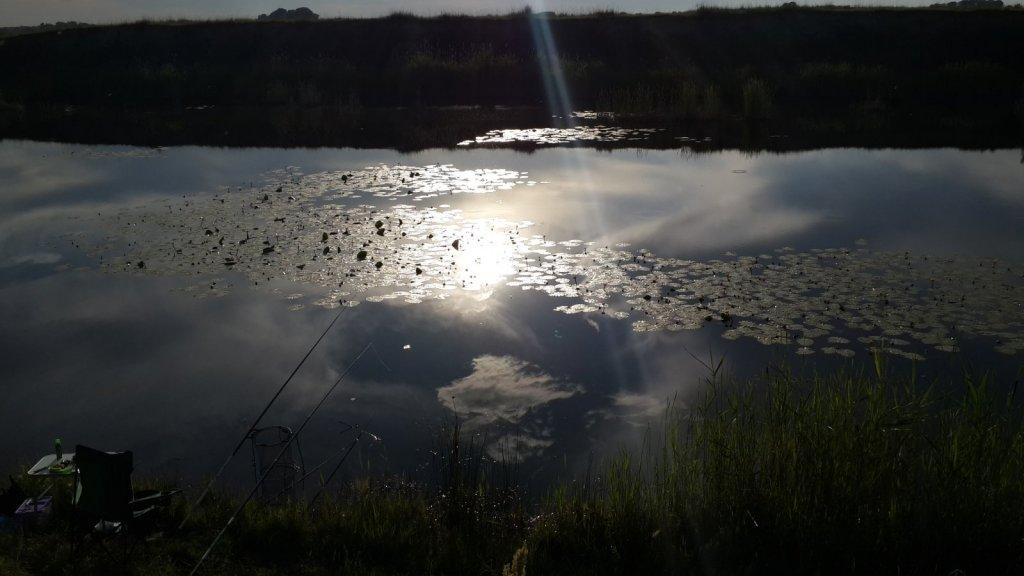 небо в пруду