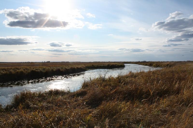 Озера в районе Малышевской - Хомутины
