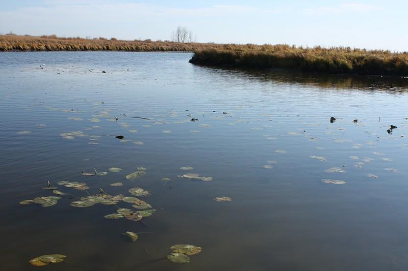 Озеро Хомутина Октябрь