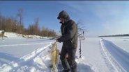 Зимняя рыбалка в Томской области. Парабель. 2016 г.
