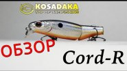 Обзор Kosadaka Cord-R XS. Hard lure Kosadaka Cord-R XS review