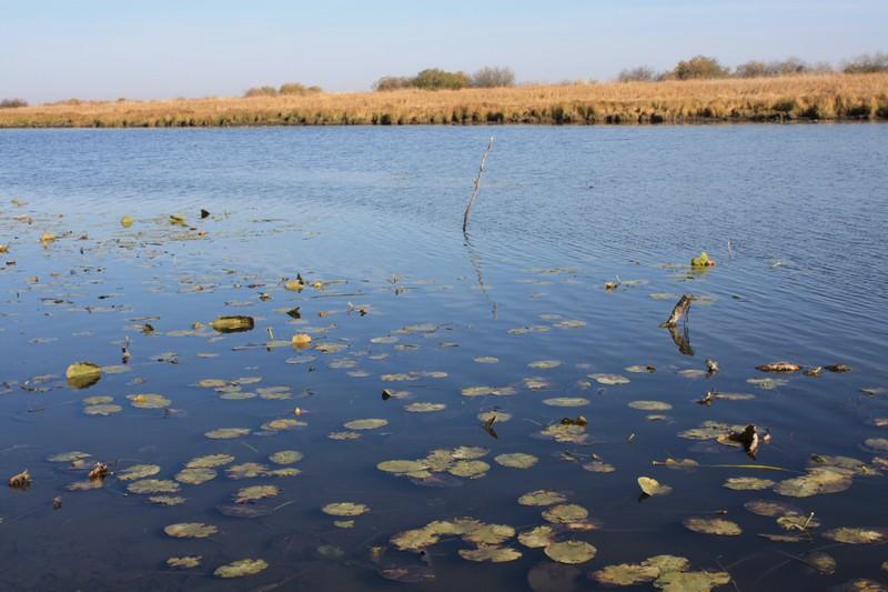 Озеро Хомутина