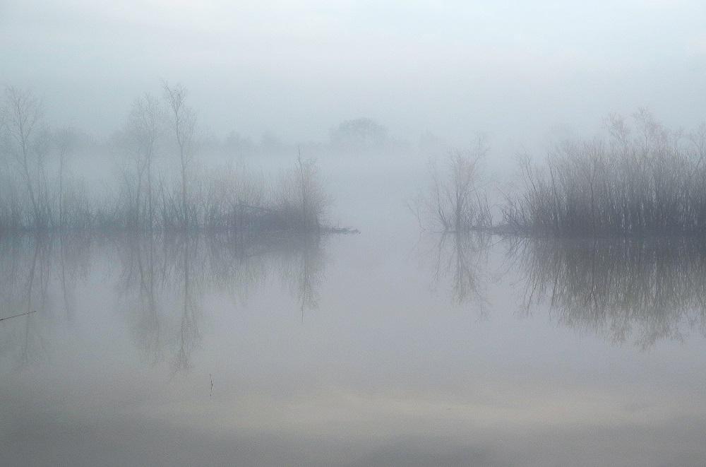 Туманное половодье