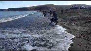 Массовый выброс рыбы  Уёк в Татарском проливе остров Сахалин в Томари.