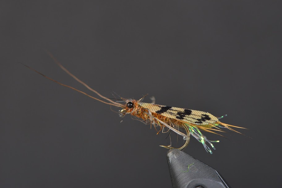 Dry Fly caddis Realistic