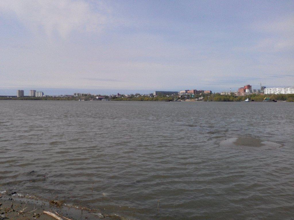 Обь. левый берег