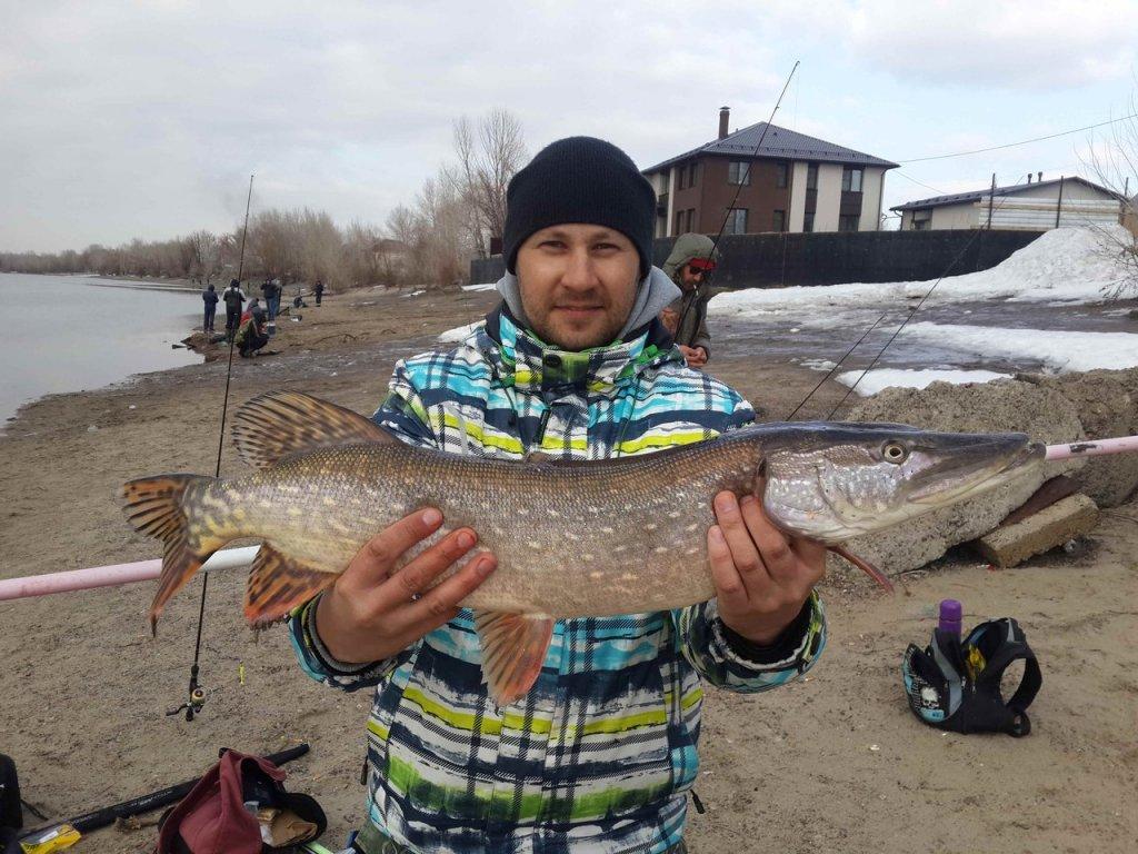 Продуктивное начало нового сезона, рыбка с апреля. Вес 3600
