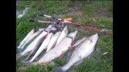 Дустовая рыбалочка