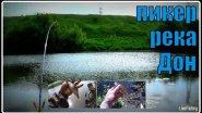 Короткая рыбалка на пикер.  Река Дон.