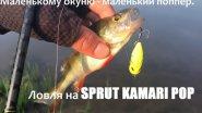 Маленькому окуню - маленький поппер. Ловля на SPRUT KAMARI POP.