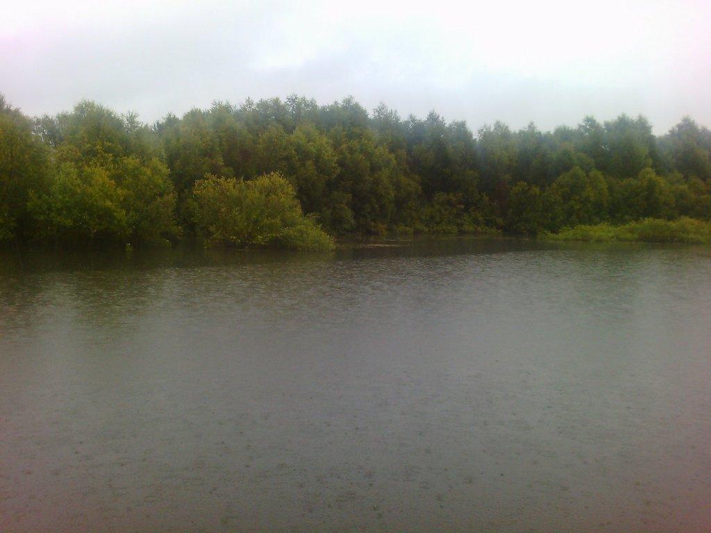 дождливое утро Оби