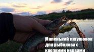 Маленький лягушонок для рыболова с крепкими нервами