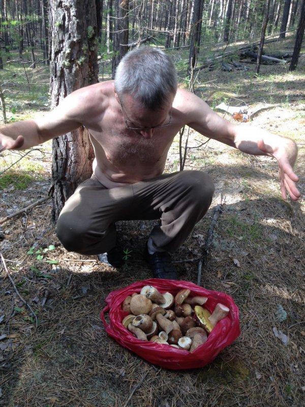 Каракан грибы 1