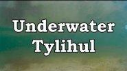 Underwater Tylihul