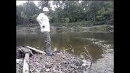 Ловля леща на донку. fishing