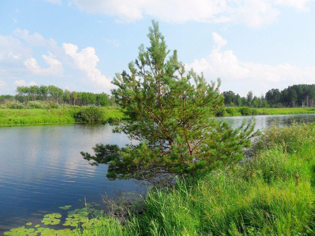 озеро Чёрное...