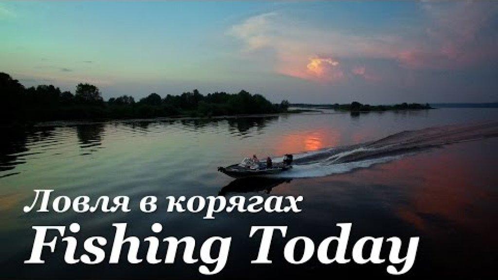 Как ловить джигом в корягах - Fishing Today