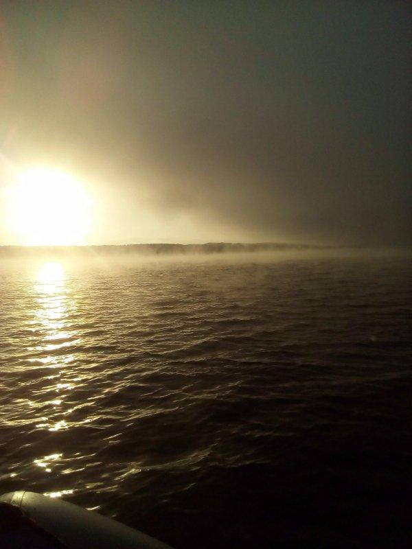 Туман на бердском заливе