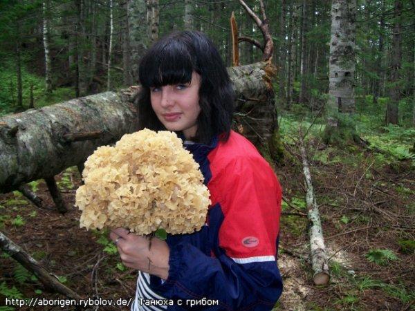 У нас есть такой гриб... А у вас?