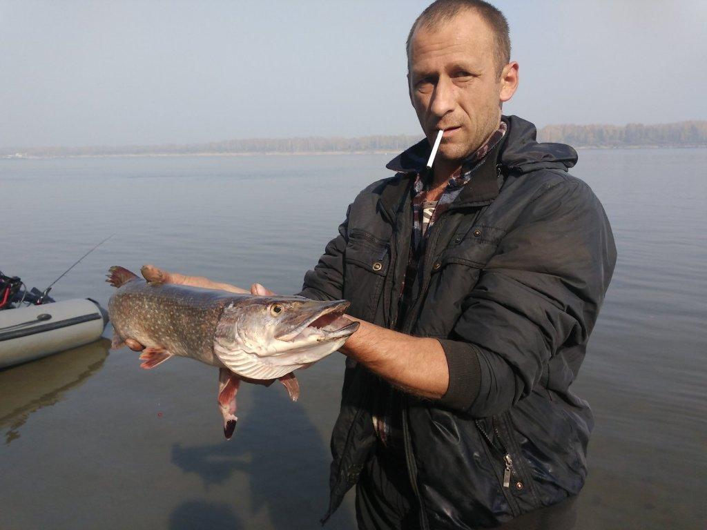 В Томской области рыба пошла на нерест
