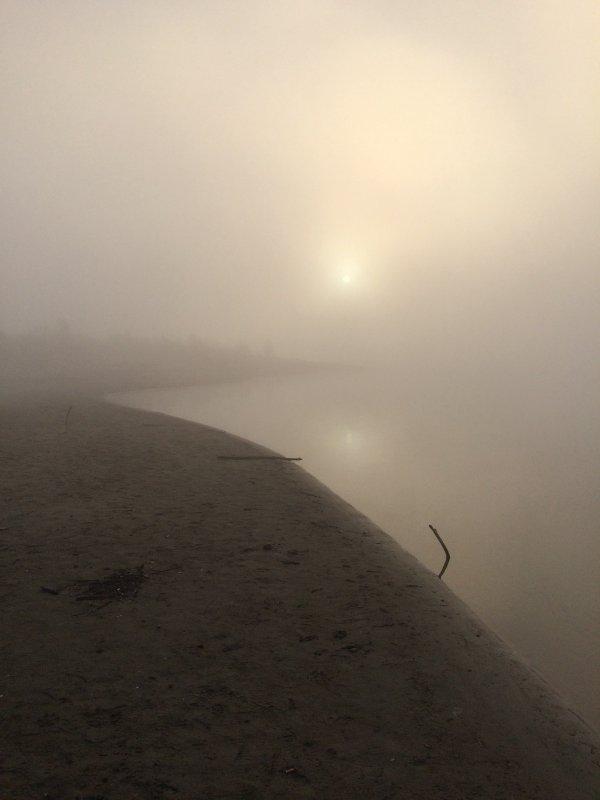 Туман на реке