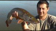 Рыбалка на щуку, серия 2